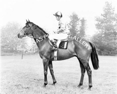 Racehorse Captain Christy with Jockey H Beasley